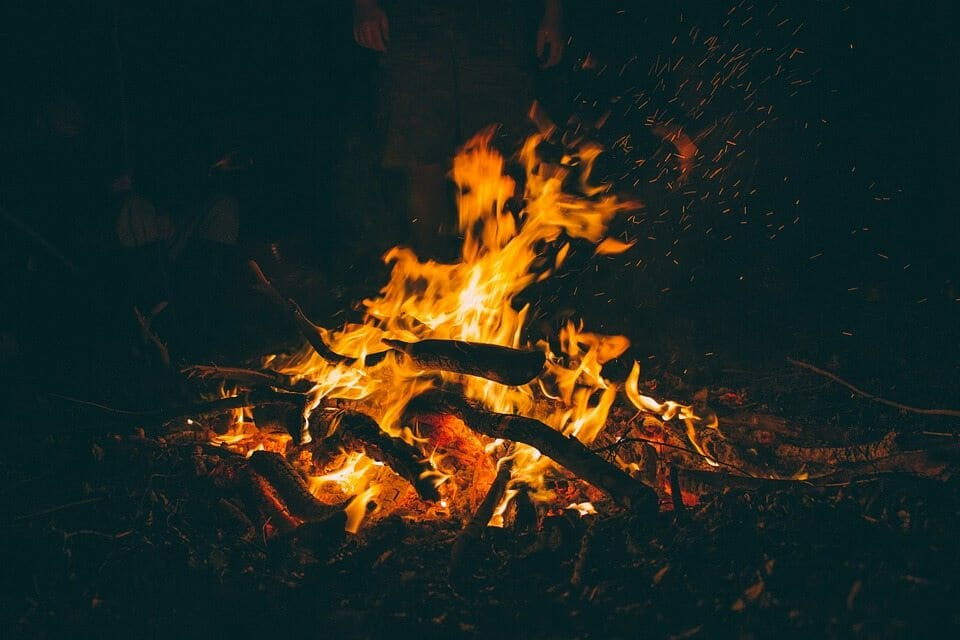 What S The Best Wood To Burn In A Campfire
